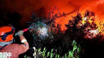 বনভূমিতে দাবানলে চীনে ১৯ জন নিহত