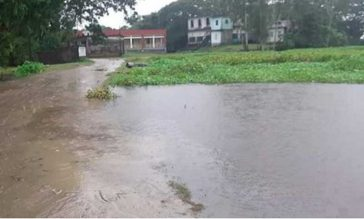 পানি বৃদ্ধি পেলো হবিগঞ্জের হাওরে, বন্যার আ'শঙ্কা